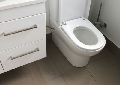 bathroom-cleaning-2