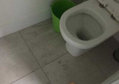 toilet-before