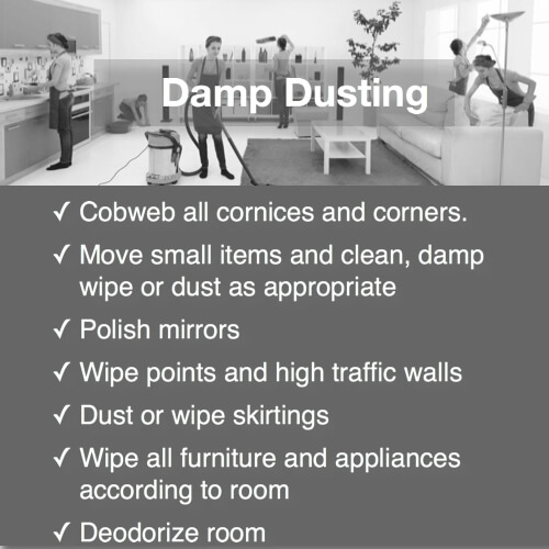 domestic bliss damp dusting service detail duties